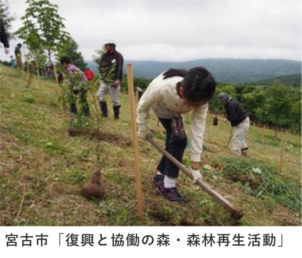 宮古市「復興と協働の森・森林再生活動」